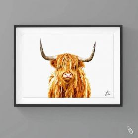 Highland Cow With Horns Print