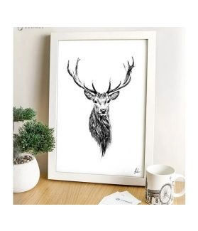 Stag's Head - Scottish Red Deer Print