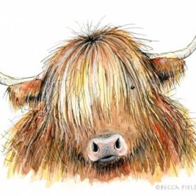 Highland Cow by Becca Fielding